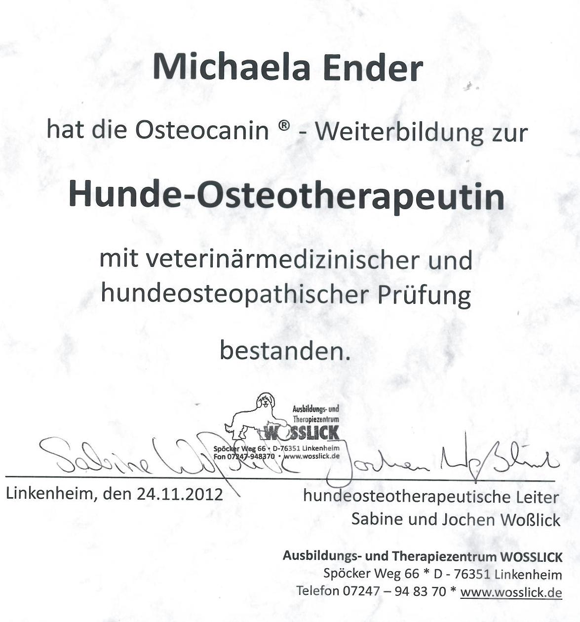 Zertifikat Osteopathie