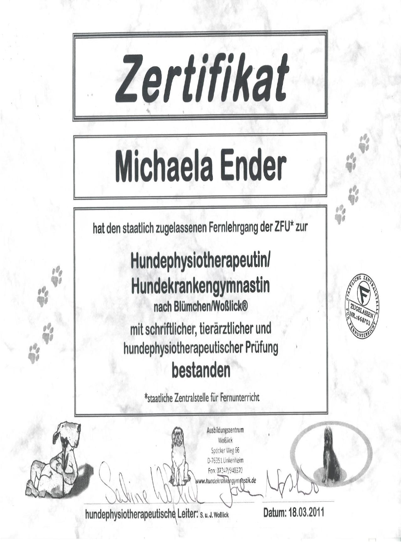 Zertifikat Physiotherapiet